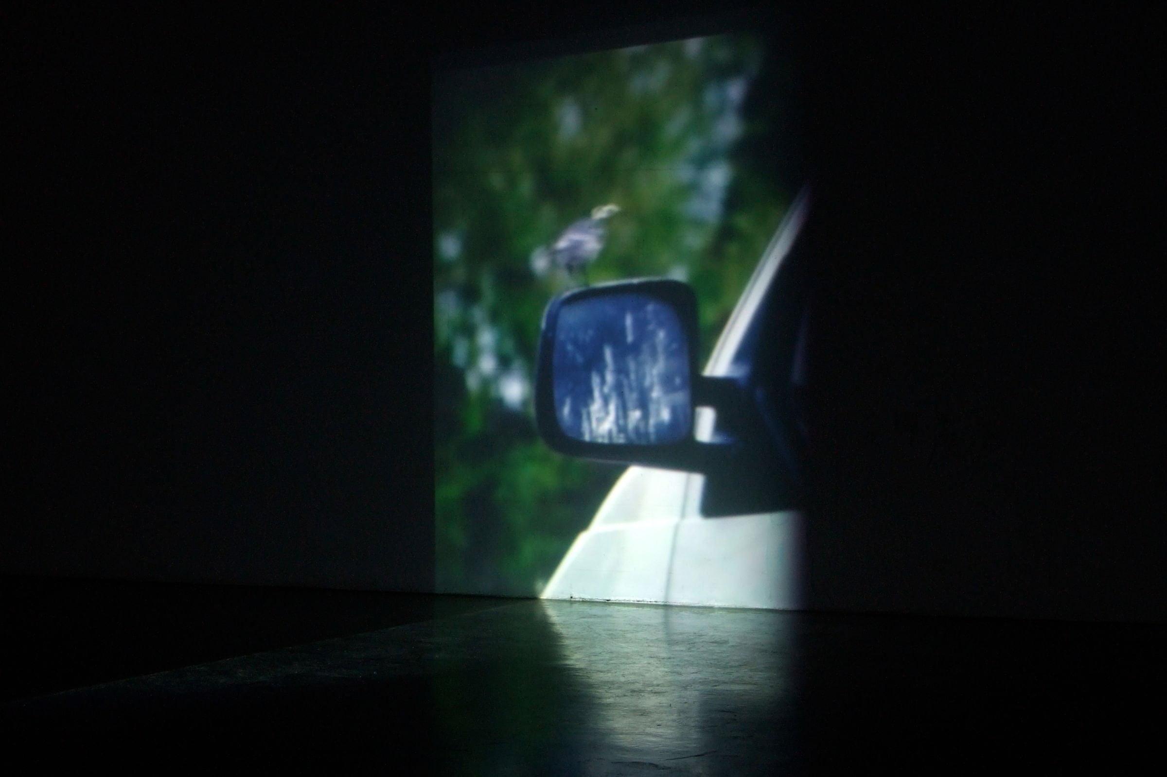 Video installation Prelude